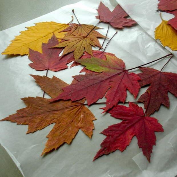 how-to-embrace-wonderful-autumn1-2.jpg