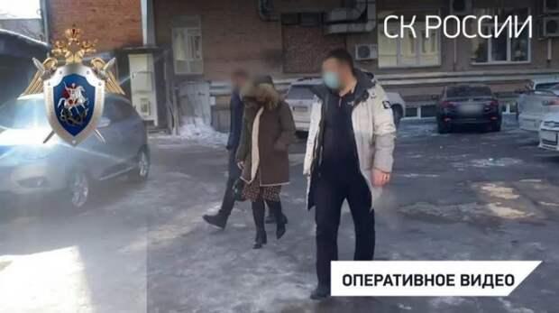 В Красноярске задержали супругу директора фирмы, обвиняемого в торговле новорождёнными детьми