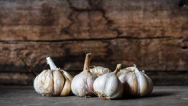 https://prolife.ru.com/wp-content/uploads/2018/09/what-will-happen-with-organism-if-often-eat-garlic_3_1529773011652-300x169.jpg