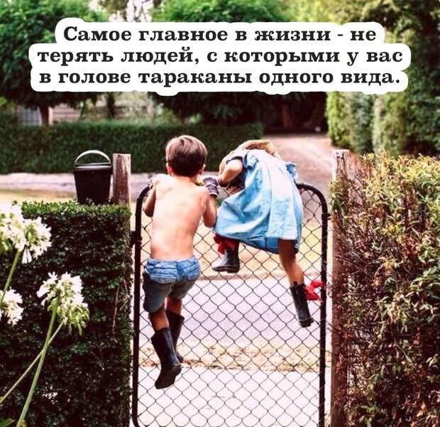В деревне Сидоровка был всего один стог сена...