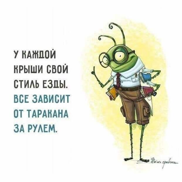Идиоты - как тараканы