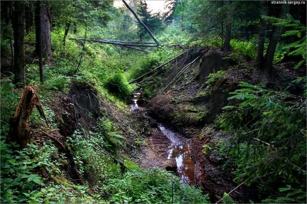 Исток большой реки