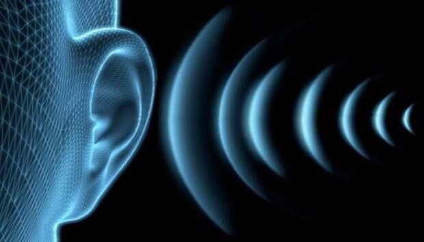 Слуховая система может отслеживать движение объектов наравне со зрительной