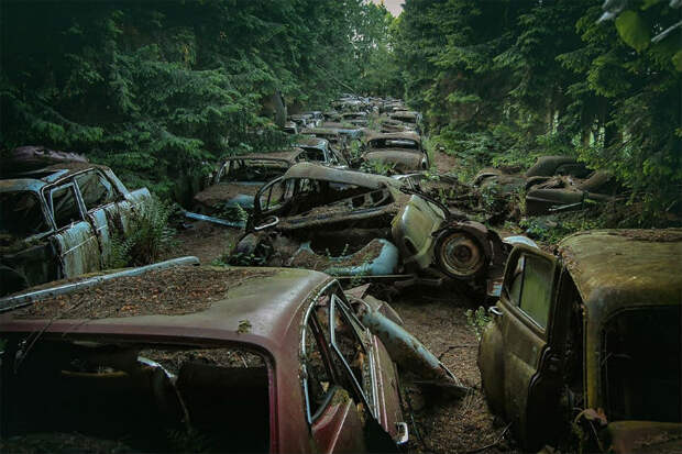 Немец десять лет искал по всей Европе кладбища старых машин — от тракторов до «Мерседесов»