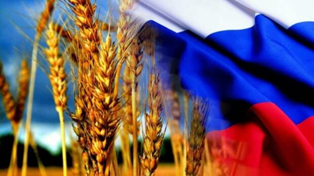 Это победа над миром: Россия стала сельскохозяйственной державой