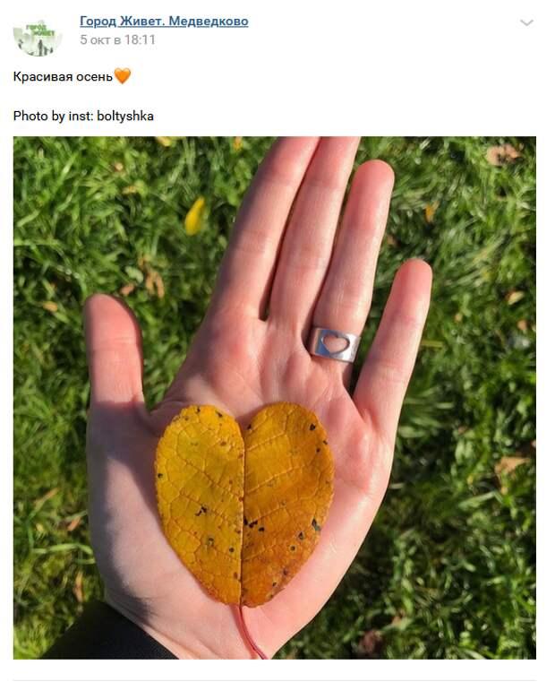 Фото дня: осеннее сердце из Медведкова