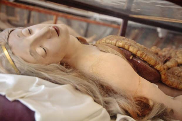 Анатомическая Венера: наком учились патологоанатомы XVIII века