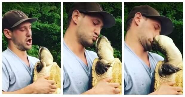 Пойманная на крючок черепаха не оценила знаков внимания к своей персоне видео, животные, идиот, поцелуй, рыбалка, сша, укус, черепаха