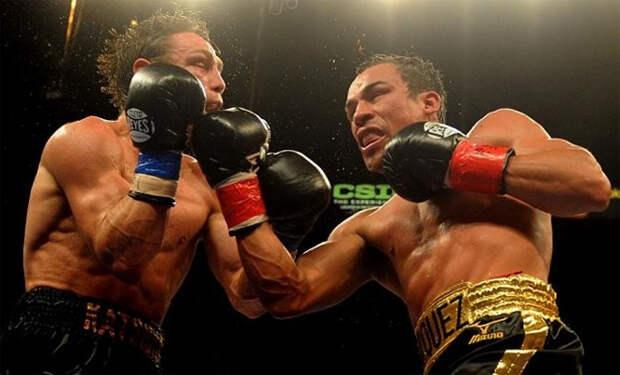 5 простых и действенных ударов в боксе