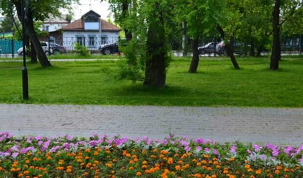 Цветы наклумбах Нижнего Тагила в2021 году посадит ИПизЕкатеринбурга