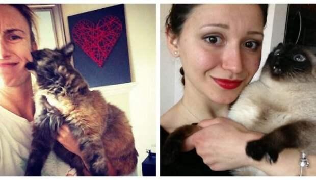 15 котов, которые ненавидят селфи с людьми