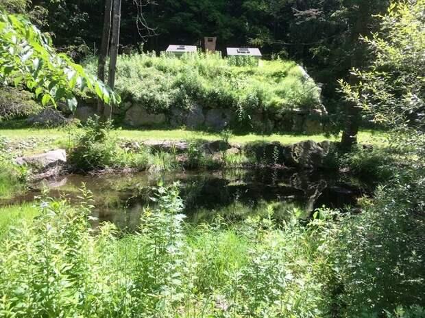 На участке расположен пруд и протекает ручей.
