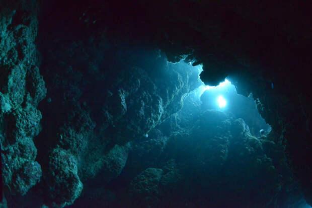 20 самых интересных и удивительных фактов об океане