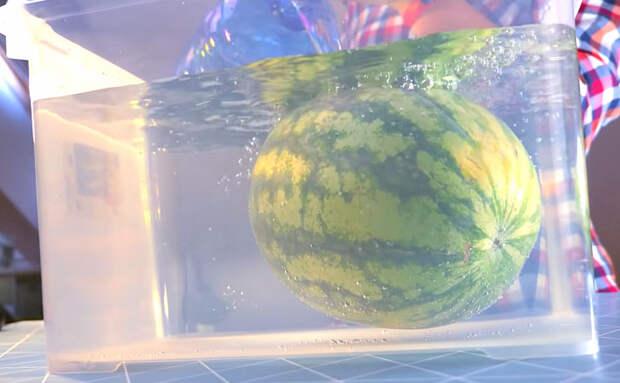 Сохраняем арбуз в воде до Нового года, потом останется просто открыть и порезать