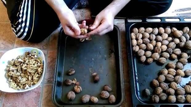 Как правильно хранить грецкие орехи