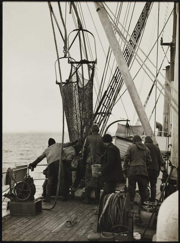 Первая Австралийская антарктическая экспедиция в фотографиях Фрэнка Хёрли 1911-1914 28