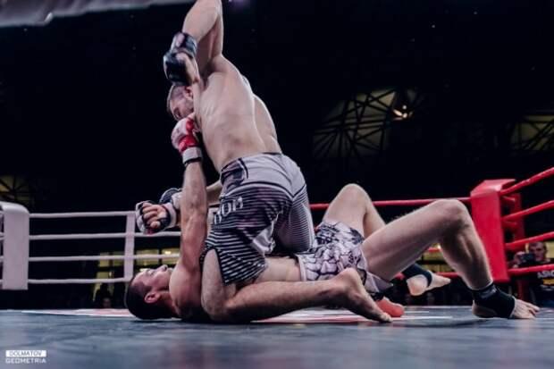 Вывели на ринг лучших бойцов!
