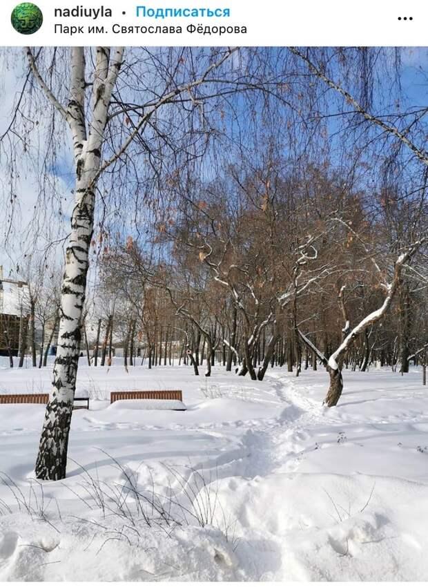 Фото дня: февральский парк имени Федорова