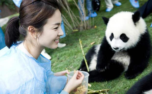 Сон Хе Гё и панда