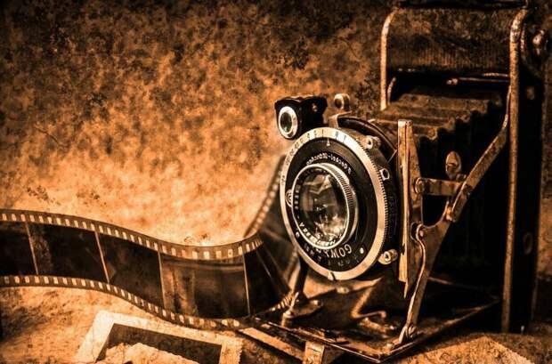 Онлайн-выставка пейзажных фото проходит в Северных парках