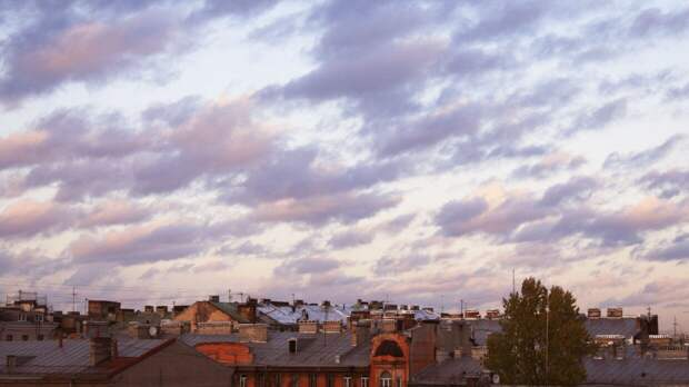 Антициклон сформирует погоду в Петербурге 16 апреля