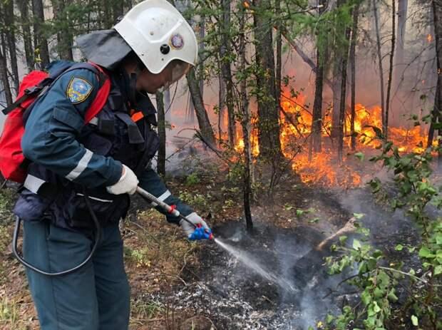Пожарные потушили лес на площади почти в полмиллиона гектаров в Якутии