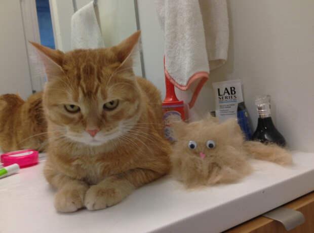 Еще один котенок бегающие глазки, наклейка, юмор