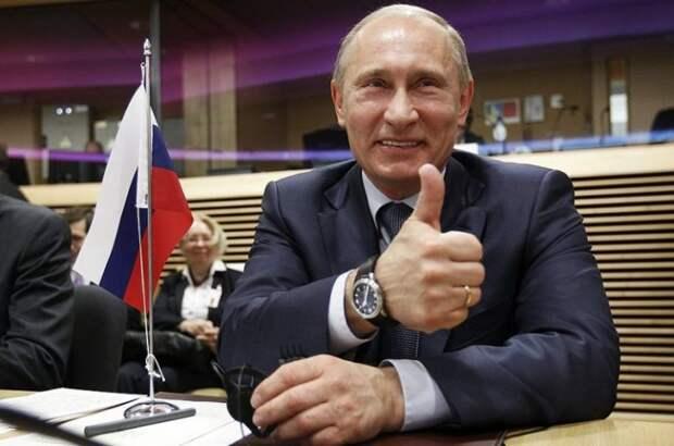 Нацисты: Путин должен звонить Трампу и умолять соединить с Зеленским!