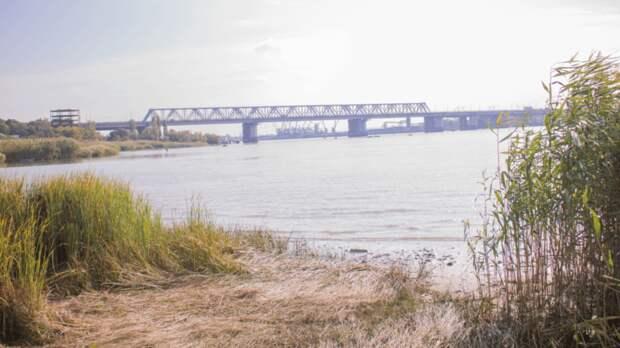 Естественным процессом назвали экологическую катастрофу на реке Мертвый Донец
