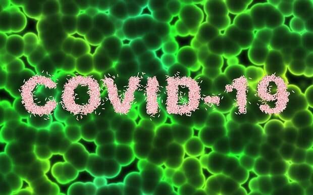 Аксенов сообщил о 205 новых случаях заболевания коронавирусом