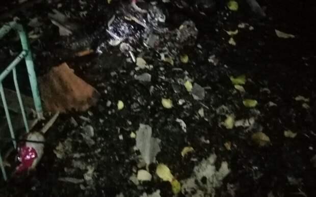 Появилось фото с места смертельного пожара под Рязанью