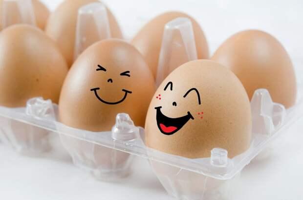 Всемирный день яйца – что нужно знать об этом продукте