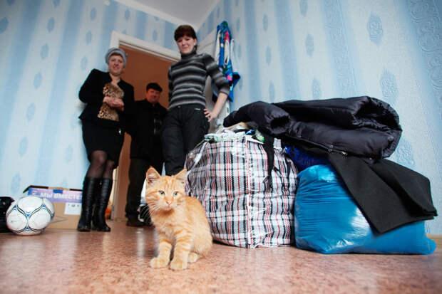 Нейросеть поможет отсортировать вторсырье и подобрать жилье