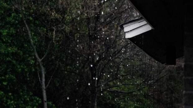Сильные дожди и грозы обрушатся на Алтайский край 19 мая