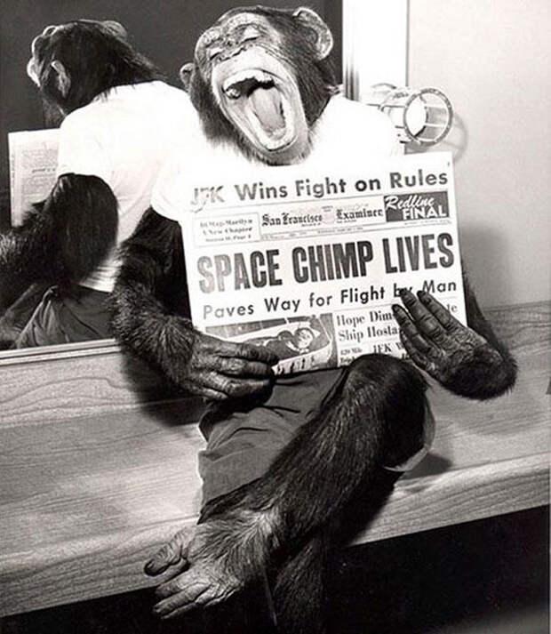Элвис в армии и Чаплин без усов: 8 атмосферных исторических фото прошлого века
