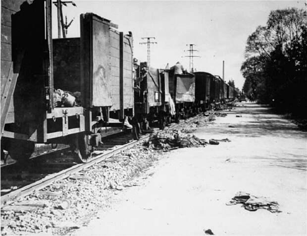 Поезд с телами остановился в только что освобожденном лагере.
