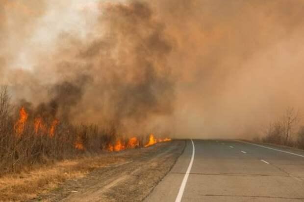 На территории Якутии действует 9 прирoдных пoжарoв