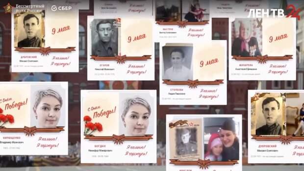Акция «Бессмертный полк» состоялась в Ленобласти онлайн