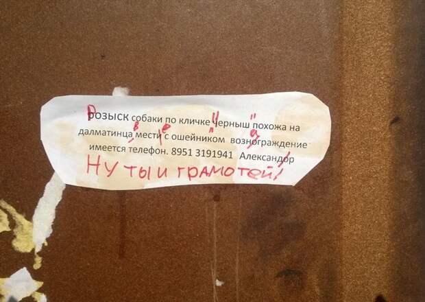 Вот почему нельзя прогуливать уроки русского языка в школе