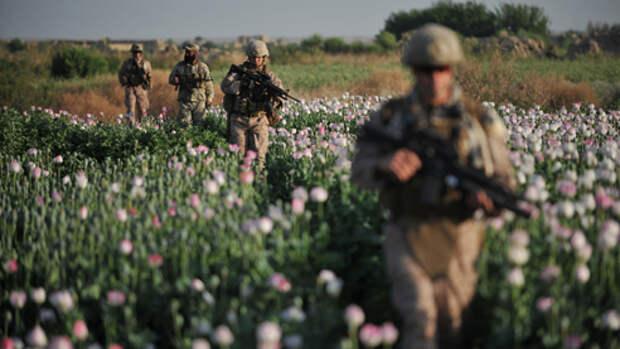 Война на уничтожение. Как мир борется с наркомафией