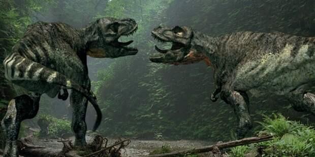 Палеонтологи выяснили для чего тираннозавры часто кусали друг друга за морды