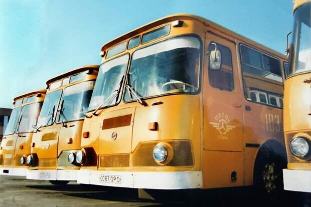 Видео: Почему в СССР красили автобусы в желтый цвет