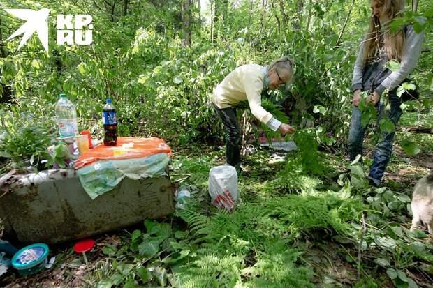 Чтобы не проваливаться в грязь, женщины делают ковер из папоротника Фото: Андрей АБРАМОВ