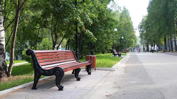 Москвичам разрешили пользоваться скамейками в столичных парках