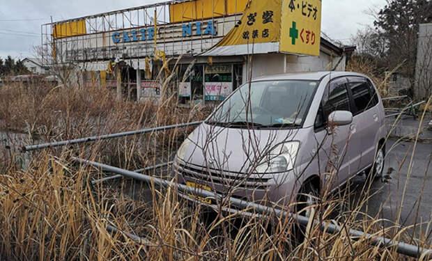 Фукусима 10 лет спустя: фото и видео из зоны отчуждения где природа стирает следы цивилизации