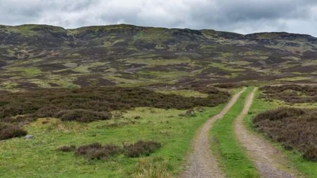 Дорога на вересковой пустоши