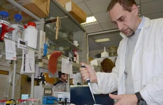 Британские вирусологи оценили данные об эффективности вакцины «Спутник V»