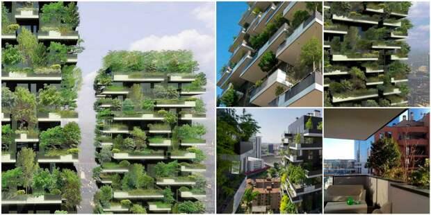 В 2014 г. завершилось строительство первого комплекса «Вертикальный Лес» (Bosco Verticale) в Милане. | Фото: afrik21.africa.