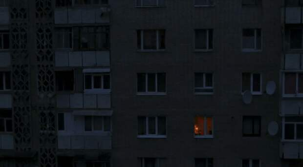Маленький щенок всю ночь плакал под окнами дома, пытаясь привлечь внимание жильцов