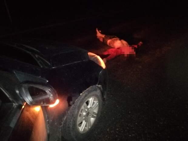 Стоящего в темноте пешехода насмерть сбили в Тверской области 18+
